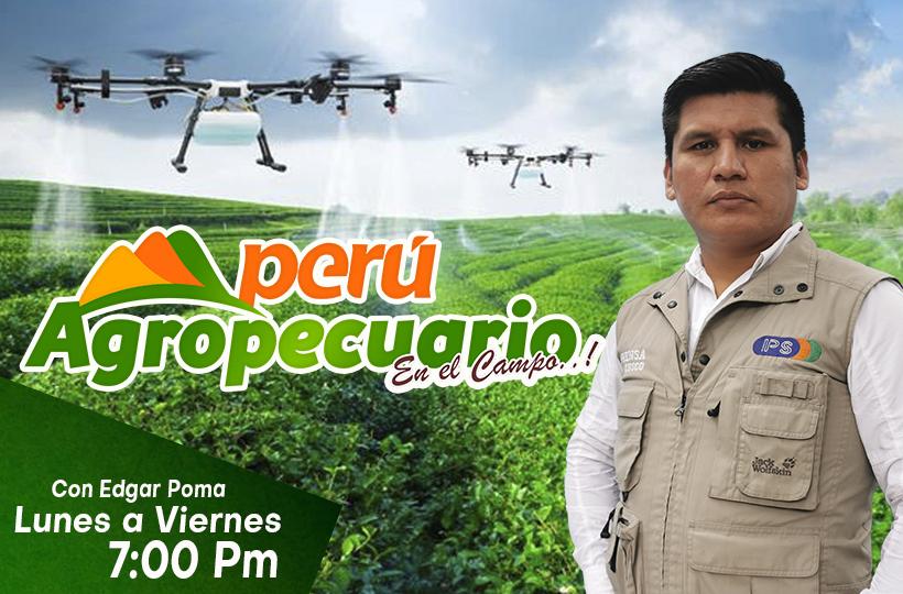 PERU AGROPECUARIO